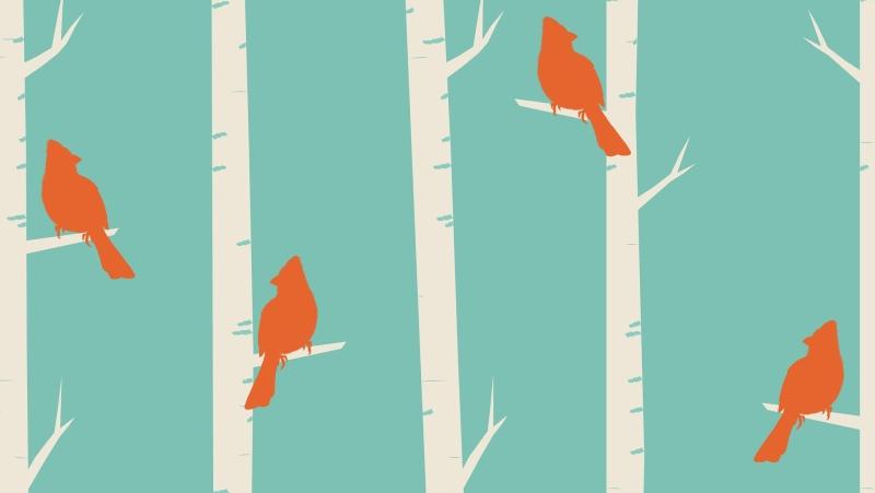 birds-1283802_1920.jpg