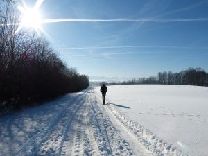 snow-2952307_1920
